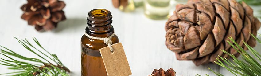 Photo of 5 aceites esenciales para la temporada navideña y sus propiedades curativas