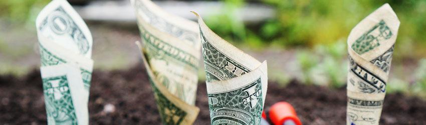 Photo of ¿Quieres atraer más dinero y riqueza? Usa estas 8 piedras